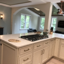 gas cooktop with downdraft ventilation